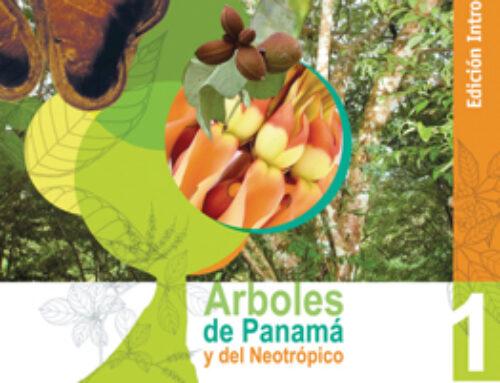 Arboles de Panama y Neotrópico 1