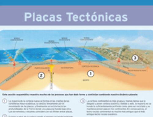 El Puente que Surge Tectonicas