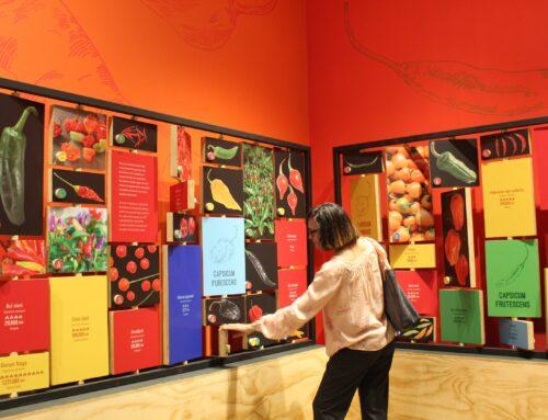 Biomuseo te invita a picarte en su nueva exhibición temporal